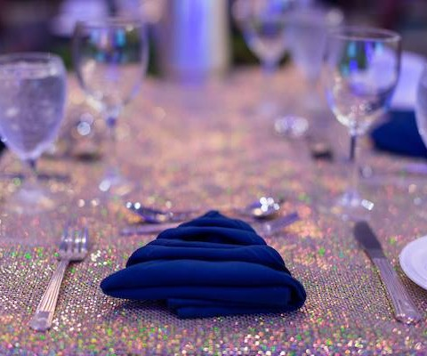 Mount St. Helens Institute Annual Dinner and Auction-Boots and Bow Ties 2016: Napkin Decor