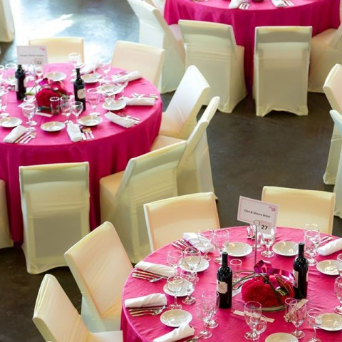 Room Decor Splashed in Pink