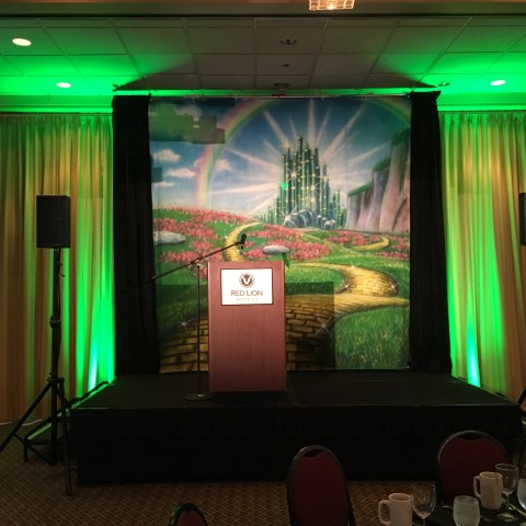 Must Love Dogs March 11th, 2017 An Emerald Affair Annual Dinner & Auction: Stage Background