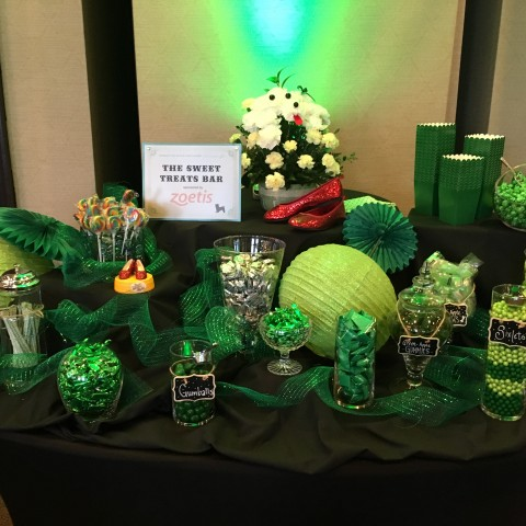 Must Love Dogs - An Emerald Affair March 11th, 2017 Annual Dinner & Auction: Candy Bar